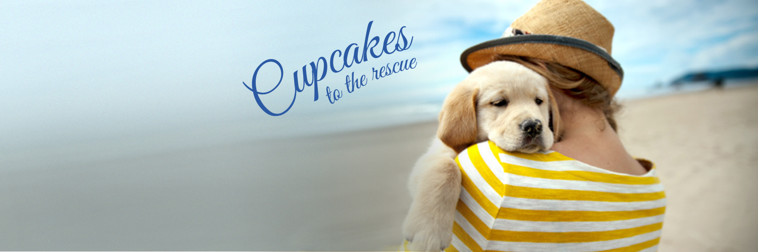 2016 National Cupcake Day Twitter Cover