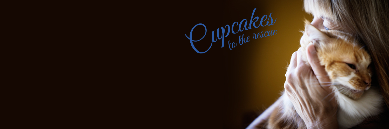 2016 National Cupcake Day™ Twitter Cover