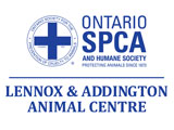 Ontario SPCA L&A Animal Centre