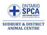 2019 Cupcake Day Ontario SPCA Sudbury Animal Centre