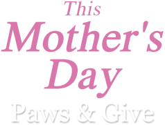 This Mother's Day Paws & Give
