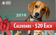 Calendars On Sale Now Box Ad