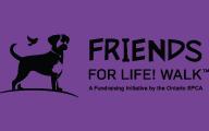 FFLW logo ad
