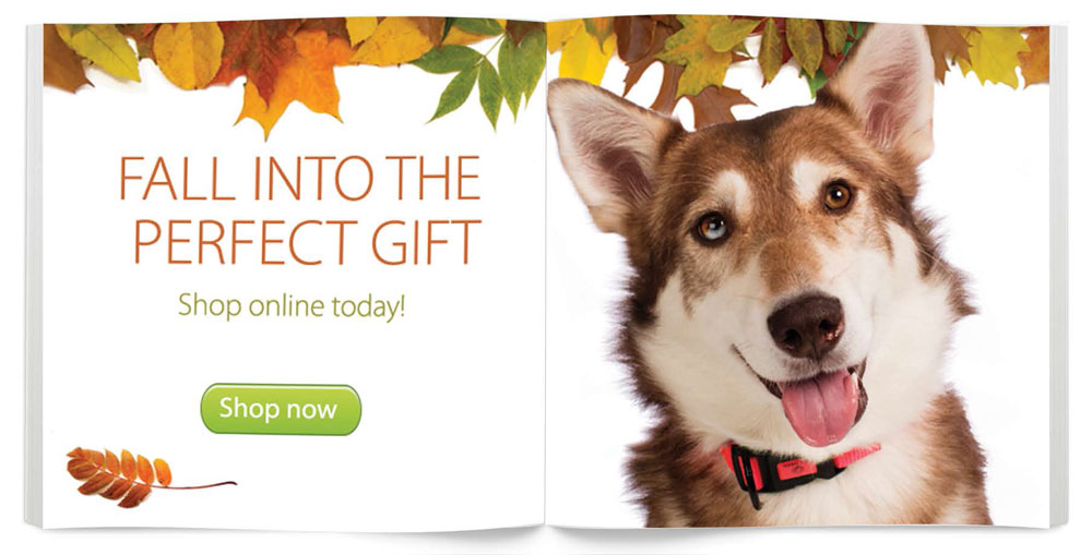 Fall into the perfect gift
