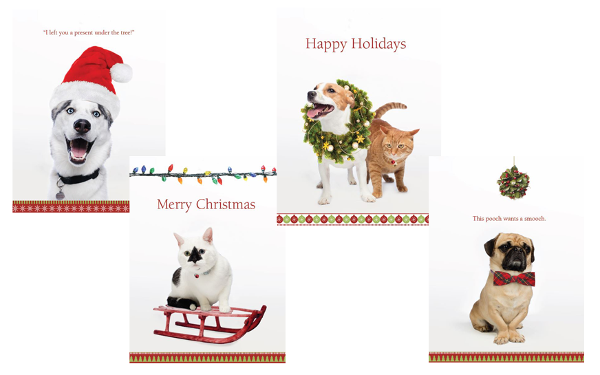 2016 Animal Themed Holiday Cards