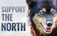 Northern Dog Newshound AD