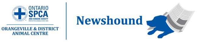 Orangeville Newshound logo