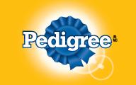 PedigreeLogo_Ad.jpg