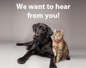 Newshound Help