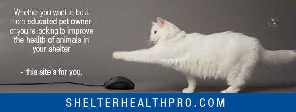 Newshound Shelter Health Pro