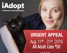 Urgent Appeal August
