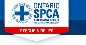ospca-emergency-email-logo.jpg